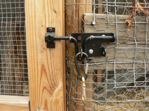 Predator-proof lock? We hope so...